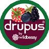 Drupus Shop Logo